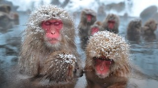 寒い日でも快適に練習できるおすすめテニス防寒グッズ